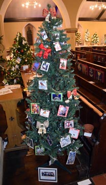 Club tree_edited-1